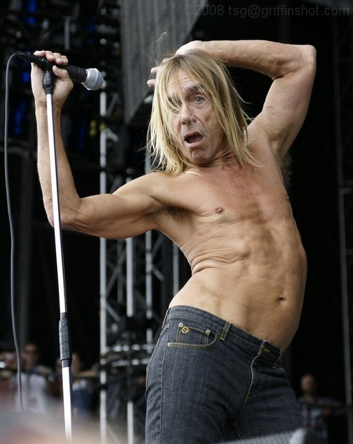 Iggy Pop at the Virgin Mobile Festival
