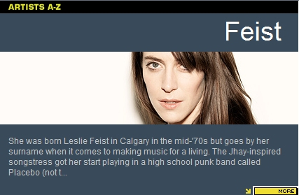 Feist Unplugged on VH1