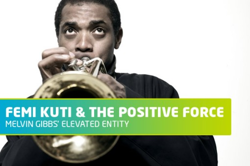 Femi Kuti at Celebrate Brooklyn!