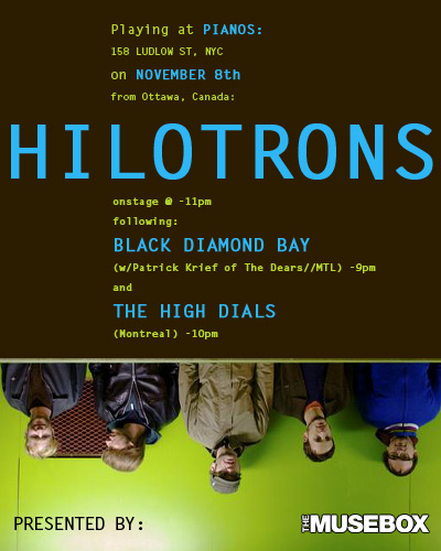Hilotrons, High Dials, Black Diamond Bay