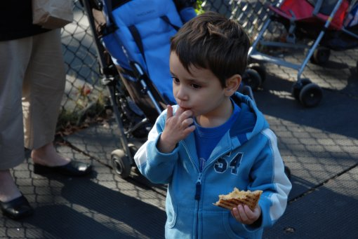 Max eating grilled cheese